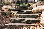 Natural Steps and Pathway Stone